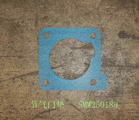 SMW250189