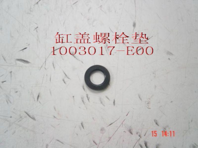 1003017-E00