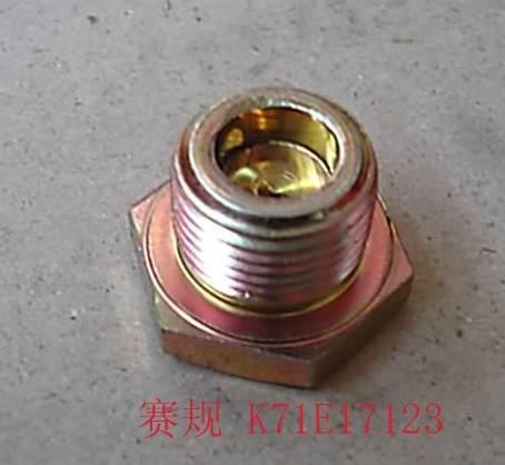 K71E17123