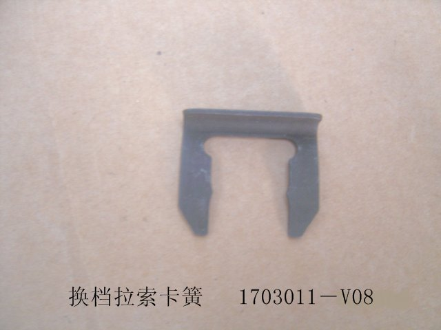 1703011-V08