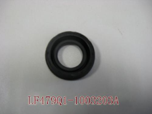 LF479Q1-1003203A