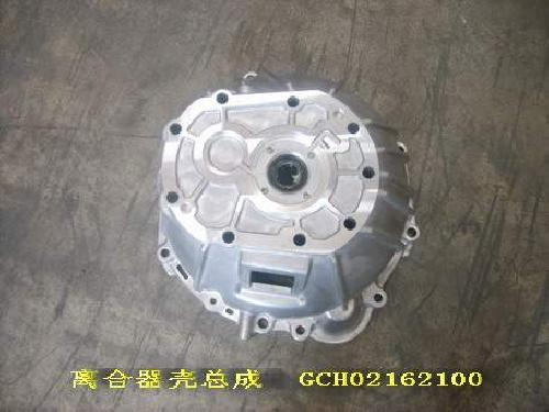 GCH0216210