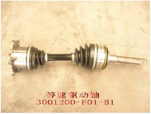 изображение 3001200-F01-B1