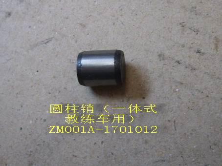 изображение ZM001A-1701012