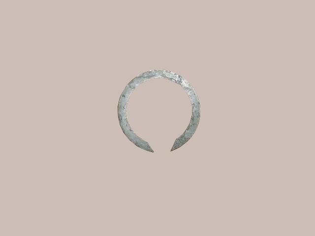 изображение ZM001A-1701113