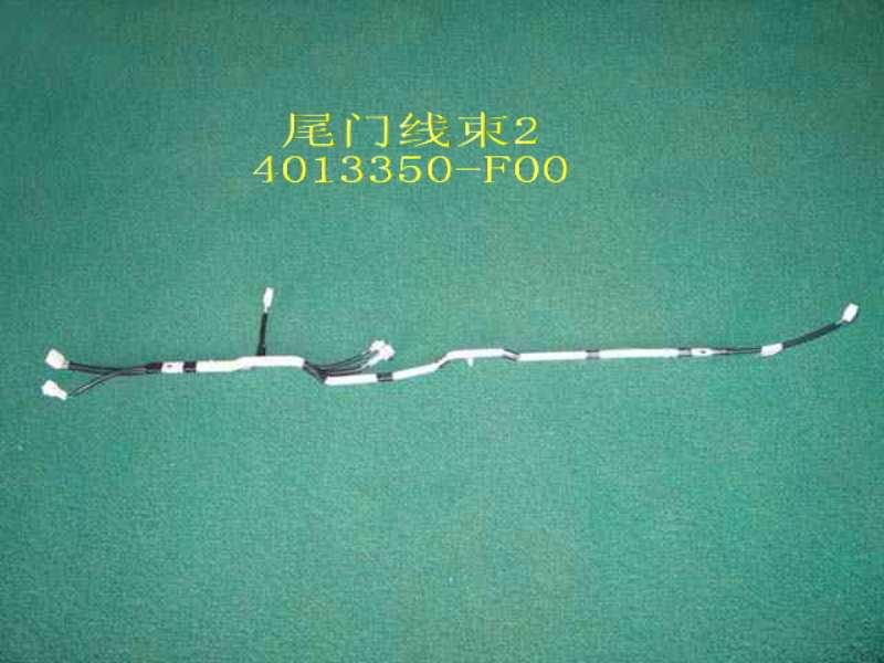 изображение 4013350-F00