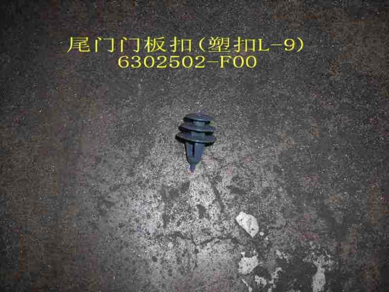 изображение 6302502-F00
