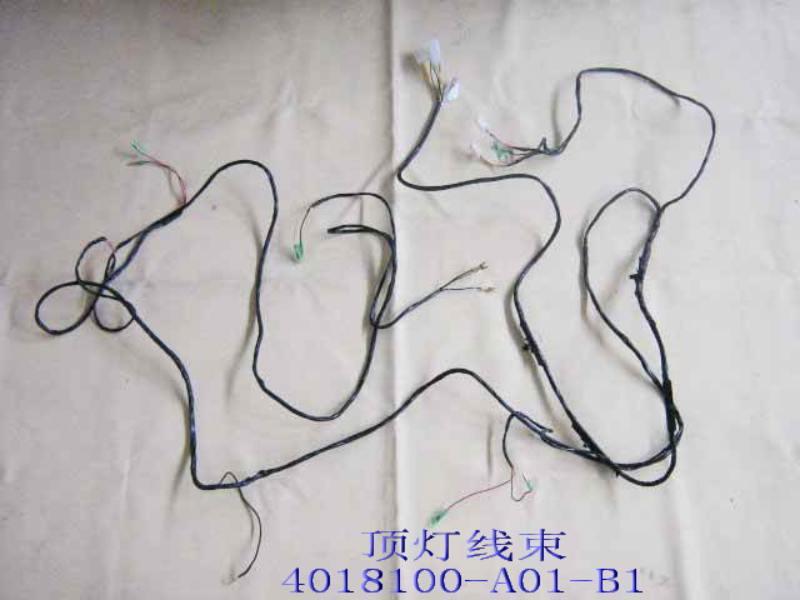 изображение 4018100-A01-B1