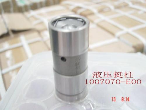 491Q-1007070